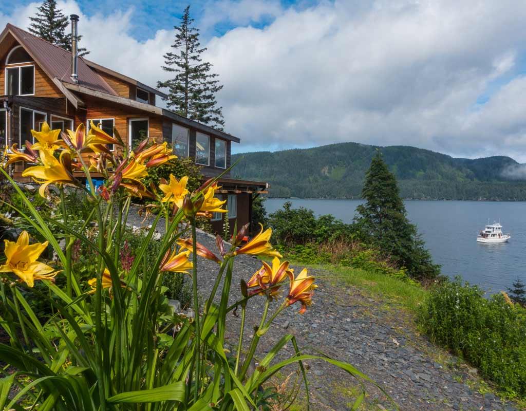 Kodiak-Wildlife-Viewing-A