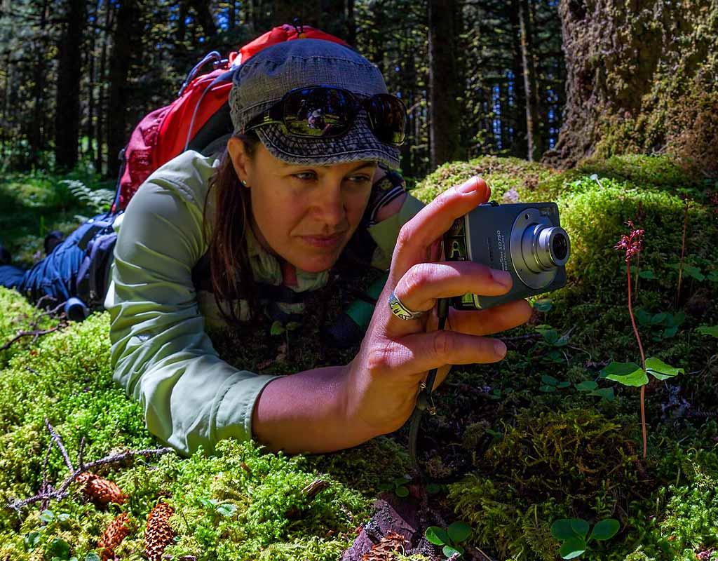 Kodiak-Wildlife-Viewing-Photog-Orchids